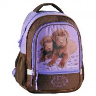 Plecak szkolny brązowe pieski Paso